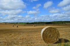 Runde Heuballen auf einem Sussex-Bauernhof Stockfotos