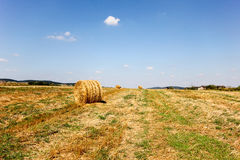 Runde Heuschober liegen auf dem Feld an einem sonnigen Tag stockfoto