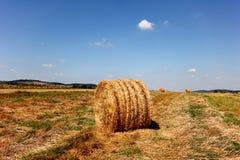 Runde Heuschober liegen auf dem Feld an einem sonnigen Tag lizenzfreie stockfotografie
