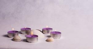 Runde purpurrote Kerzen und Muscheln Stockbild