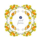 Runde Rahmen des Vektors mit Persimone und Blume Lizenzfreie Stockbilder
