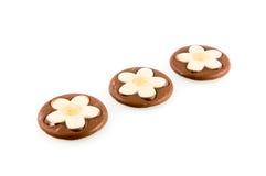 Runde Schokoladen mit weißer Blume Stockbilder