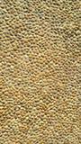 Runde Steine Browns gemasert Lizenzfreie Stockbilder