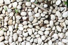 Runde weiße Stein-Garten-Beschaffenheit stockfotos