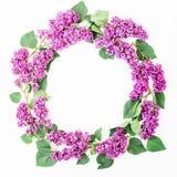 Runder Blumenrahmen von lila Niederlassungen und von Blättern auf weißem Hintergrund Flache Lage, Draufsicht Sommermuster Lizenzfreie Stockbilder