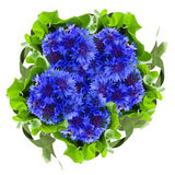 Runder Blumenstrauß der blauen Kornblumen stockbilder