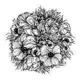 Runder Blumenstrauß von Blumen, schwarze grafische Konturen auf einem weißen Hintergrund Vektorillustration, Elemente für Design Stockfotos