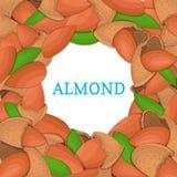Runder farbiger Rahmen bestanden aus Mandelnuß Vektorkartenillustration Kreisen Sie Nüsse, Mandeln Früchte tragen im Oberteil ein Stockbild