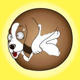 Runder Hund Stockfoto