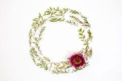 Runder mit Blumenrahmen auf weißem Hintergrund Flache Lage, Draufsicht Lizenzfreies Stockbild