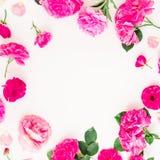 Runder mit Blumenrahmen von Rosen, von Pfingstrosen und von Blättern auf weißem Hintergrund Flache Lage, Draufsicht Blumenlebenss Stockfotografie