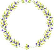 Runder Rahmen der blauen Beere des Aquarells Stockfotos