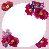 Runder Rahmen des Aquarells von Blumen mit Rosa und den roten Blumenblättern lizenzfreie stockfotografie