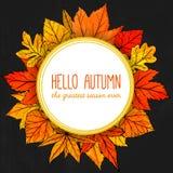 Runder Rahmen des Herbstes mit Hand gezeichneter Orange und Rot Stockbilder