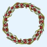 Runder Rahmen des Vektors von den roten Tulpen stock abbildung
