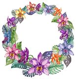Runder Rahmen gemacht von den schönen bunten Orchideenblumen und von mostera Blättern Leerer Raum für Ihren Text in der Mitte Stockbild