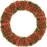 Runder Rahmen von den Niederlassungen des roten Frühlinges Stockbilder