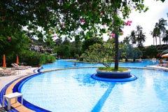 Runder Swimmingpool, Sonnenruhesessel nahe bei dem Garten und Gebäude Stockfoto