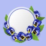 Runder Textrahmen mit blauer Stiefmütterchenblume und grünem Blatt Stockbild