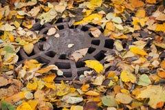 Rundes Abwasserkanaleinsteigeloch mit Blättern Lizenzfreies Stockfoto