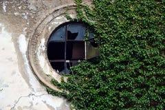 Rundes altes Fenster in der Wand, verflochten mit Efeu stockfotos