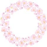 Rundes backround mit Apfelblüte Stockbild