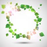 Rundes Feld gebildet mit grünen Blättern vektor abbildung