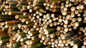 Rundes Kreuz schnitt Bambusstammbündel im Stapel, der für Gebrauch als Hochbaumaterial in Asien vorbereitet wurde frech stock video