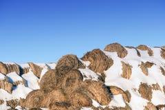 Rundes Straw Fodder Bedding Bales im Winter Lizenzfreie Stockfotografie