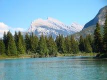 Rundle berg från den pilbågeflodBanff nationalparken royaltyfri fotografi