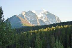 rundle för alberta banff Kanada monteringsnationalpark Royaltyfria Foton