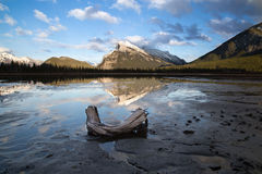 Rundle Sunset. Taken from Vermillion Lakes just outside of the Town of Banff Royalty Free Stock Images