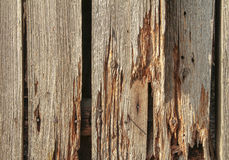 Rundown wooden planks Royalty Free Stock Image