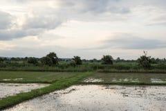 Rundresa Thailand juli 2017 - Sukhothai Royaltyfria Bilder
