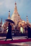 Rundvandring för Monks för Verticalï¼ Å den Shwedagon pagodaen royaltyfri bild