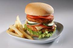 Rundvlees Burger01 stock afbeelding