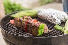 Rundvlees en Plantaardige Kebabs bij de Grill stock afbeelding