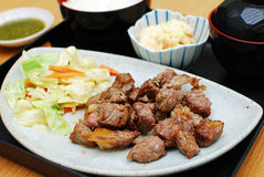 Rundvlees Geroosterde Lapje vleesreeks Royalty-vrije Stock Afbeeldingen