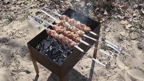 Rundvlees kababs stock video