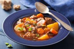 Rundvleeshutspot met aardappel en wortel in blauwe plaat Stock Fotografie