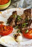 Rundvleesvleespennen met geroosterde tomaten Stock Afbeelding