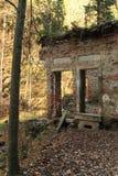 Ruïne in bos Stock Afbeelding