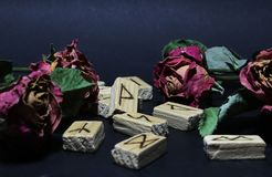 View of wooden runes around dry flowers of red roses, against a dark background. Blur background. The runes are carved by the photographer from wood and royalty free stock images