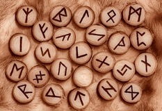Runes on the fur. Runes on fur sepia toned Royalty Free Stock Image