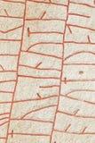 Runestone Photographie stock