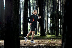 Runing in the forest Royalty Free Stock Photography