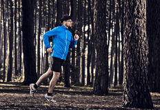 Runing in the forest Stock Images
