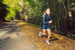Runner Royalty Free Stock Image