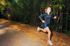 Runner Royalty Free Stock Images