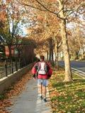 Runner athlete running on the autumn alley royalty free stock photo